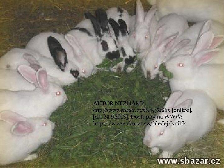 AUTOR NEZNÁMY. http: //www. sbazar. cz/hledej/králík [online]. [cit. 24. 6. 2013]. Dostupný na WWW: