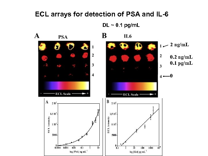 ECL arrays for detection of PSA and IL-6 DL ~ 0. 1 pg/m. L