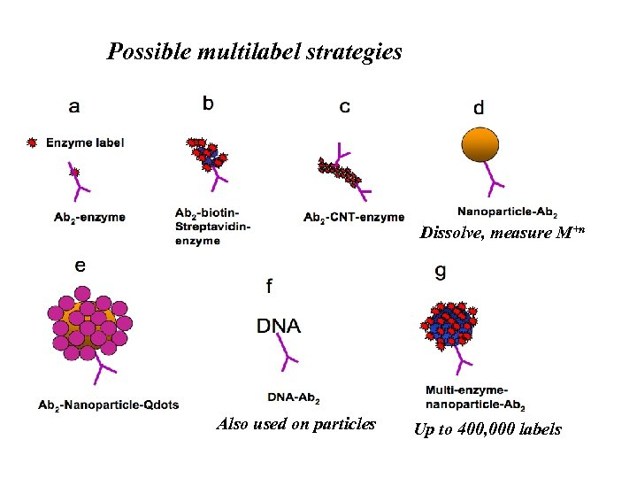 Possible multilabel strategies Dissolve, measure M+n Also used on particles Up to 400, 000