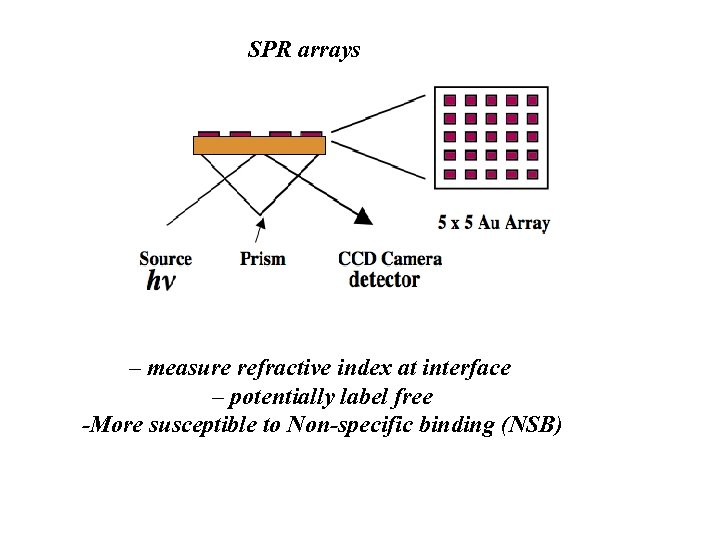 SPR arrays – measure refractive index at interface – potentially label free -More susceptible