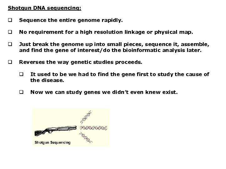 Shotgun DNA sequencing: q Sequence the entire genome rapidly. q No requirement for a