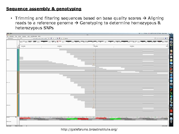 Sequence assembly & genotyping • Trimming and filtering sequences based on base quality scores