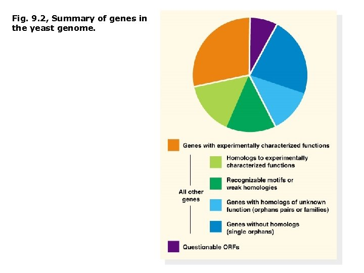 Fig. 9. 2, Summary of genes in the yeast genome.
