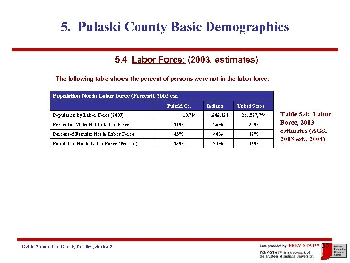 5. Pulaski County Basic Demographics 5. 4 Labor Force: (2003, estimates) The following table