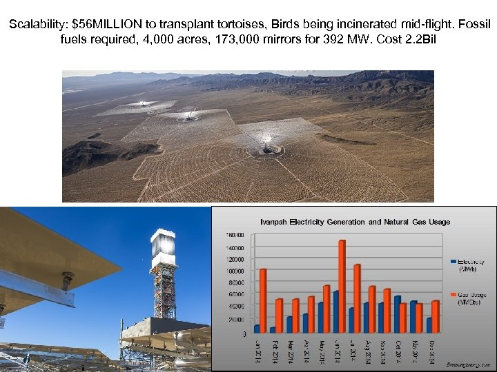 Scalability: $56 MILLION to transplant tortoises, Birds being incinerated mid-flight. Fossil fuels required,