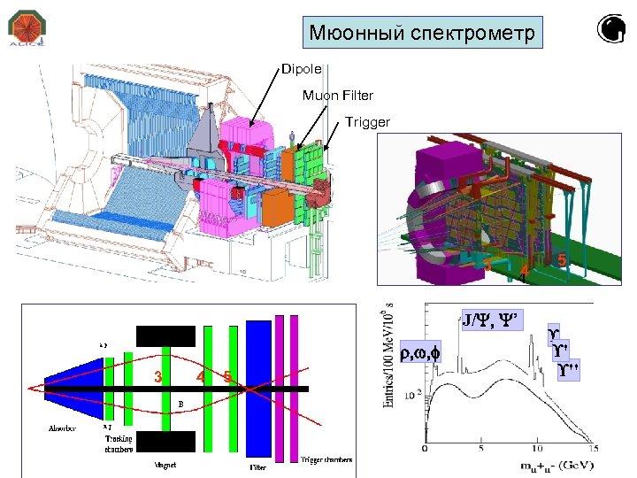 Мюонный спектрометр Dipole Muon Filter Trigger 3 4 4 J/ ' 3 4 5