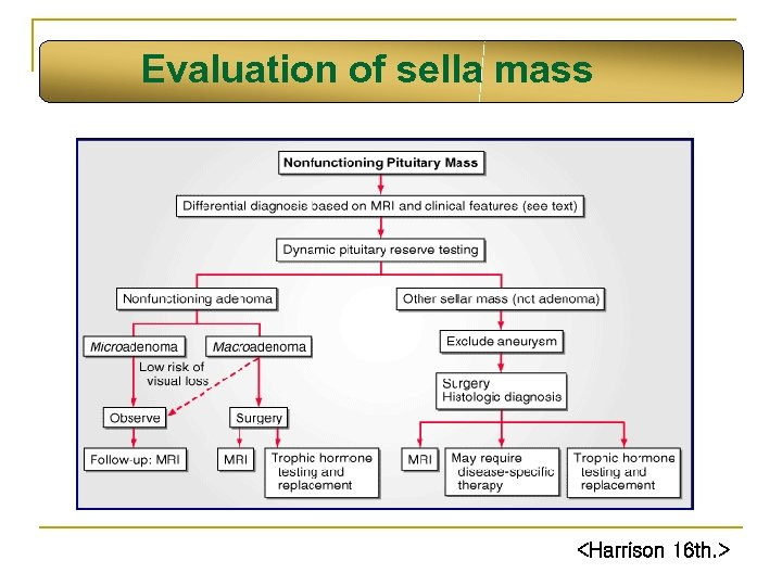 Evaluation of sella mass <Harrison 16 th. >