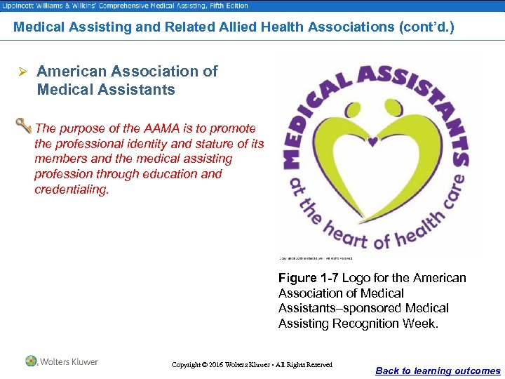 Medical Assisting and Related Allied Health Associations (cont'd. ) Ø American Association of Medical