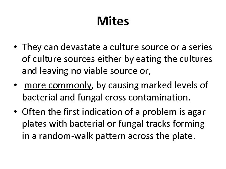 Mites • They can devastate a culture source or a series of culture sources