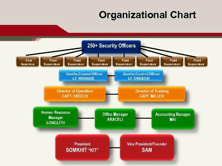 Organizational Chart 3