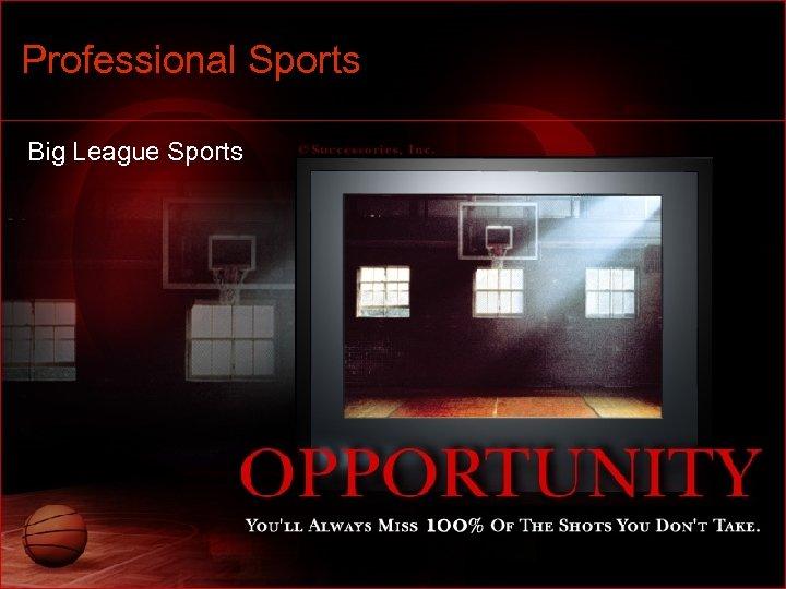 Professional Sports Big League Sports