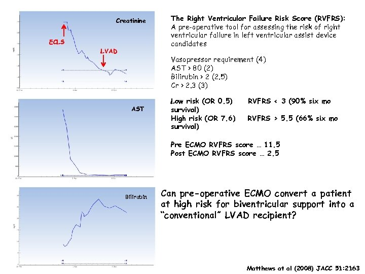 Creatinine ECLS LVAD The Right Ventricular Failure Risk Score (RVFRS): A pre-operative tool for