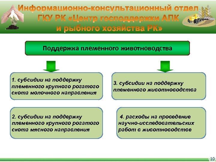 Поддержка племенного животноводства 1. субсидии на поддержку племенного крупного рогатого скота молочного направления 3.