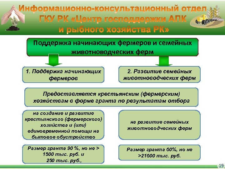 Поддержка начинающих фермеров и семейных животноводческих ферм 1. Поддержка начинающих фермеров 2. Развитие семейных