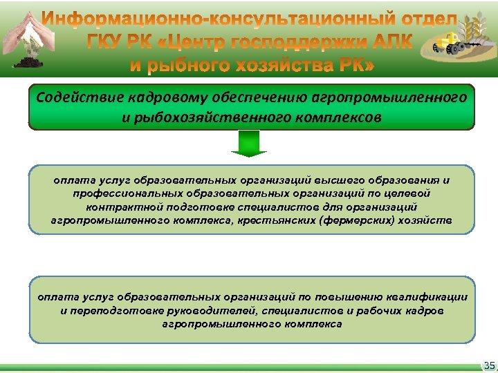 Содействие кадровому обеспечению агропромышленного и рыбохозяйственного комплексов оплата услуг образовательных организаций высшего образования и