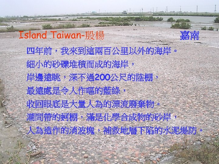 Island Taiwan-殷楊 嘉南 四年前,我來到這兩百公里以外的海岸。 細小的砂礫堆積而成的海岸, 岸邊遠眺,深不過200公尺的陸棚, 最遠處是令人作嘔的藍綠, 收回眼底是大量人為的漂流廢棄物。 潮間帶的蚵棚,滿是化學合成物的砂岸, 人為造作的消波塊,補救地層下陷的水泥堤防。