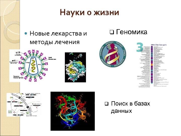 Науки о жизни q Геномика Новые лекарства и методы лечения q Поиск в базах