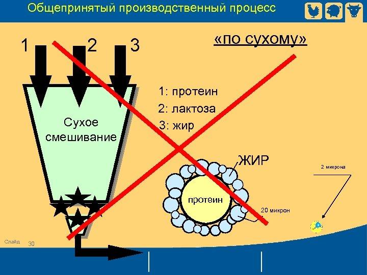 Общепринятый производственный процесс 1 2 Сухое смешивание 3 «по сухому» 1: протеин 2: лактоза