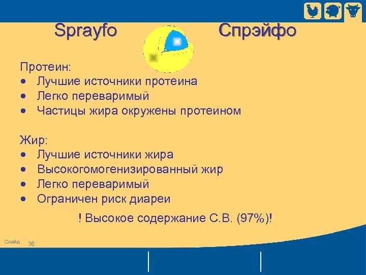Sprayfo Спрэйфо Протеин: • Лучшие источники протеина • Легко переваримый • Частицы жира окружены