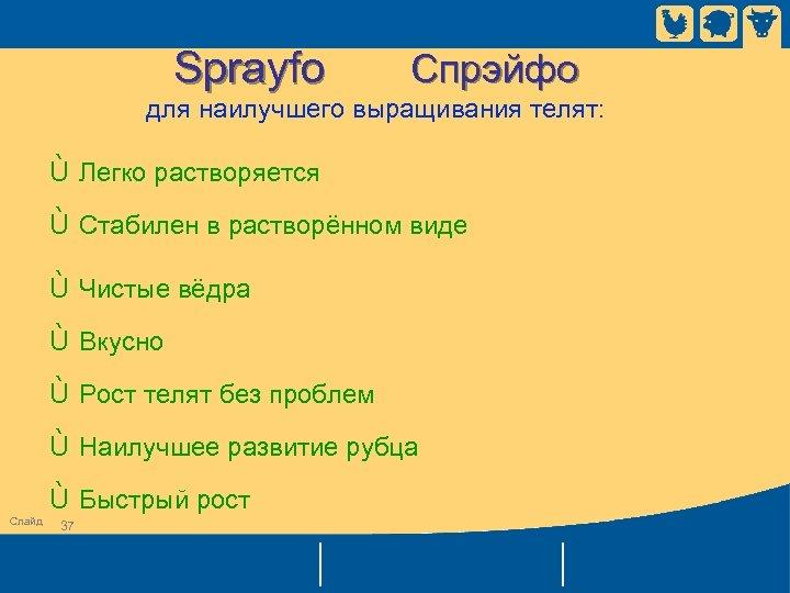 Sprayfo Спрэйфо для наилучшего выращивания телят: Ù Легко растворяется Ù Стабилен в растворённом виде
