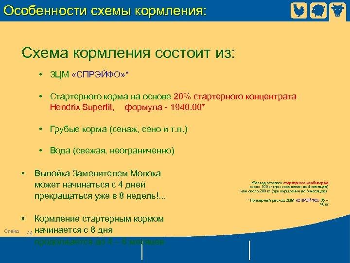 Особенности схемы кормления: Схема кормления состоит из: • ЗЦМ «СПРЭЙФО» * • Стартерного корма