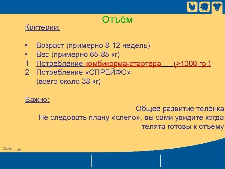 Критерии: • • 1. 2. Отъём Возраст (примерно 8 -12 недель) Вес (примерно 65