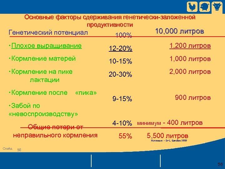 Основные факторы сдерживания генетически-заложенной продуктивности Генетический потенциал 100% 10, 000 литров • Плохое выращивание