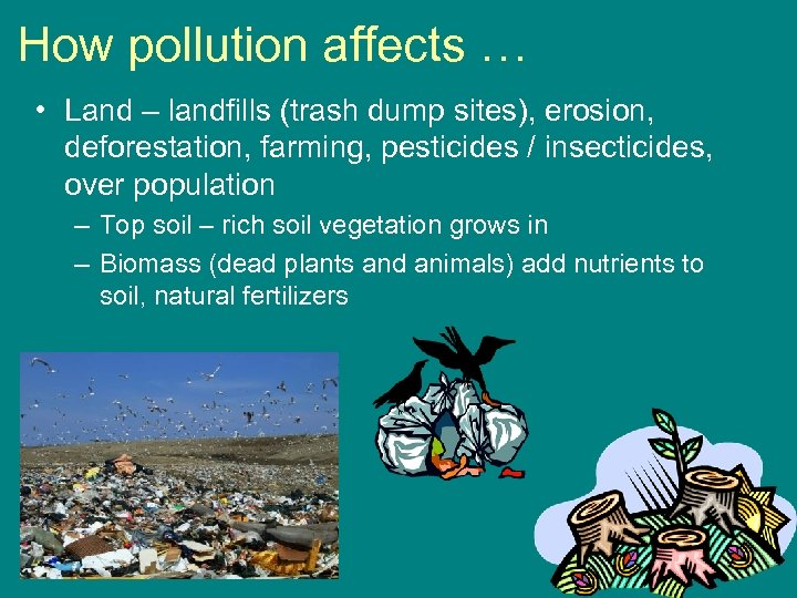 How pollution affects … • Land – landfills (trash dump sites), erosion, deforestation, farming,