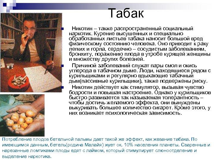 Табак n n n Никотин – также распространенный социальный наркотик. Курение высушенных и специально