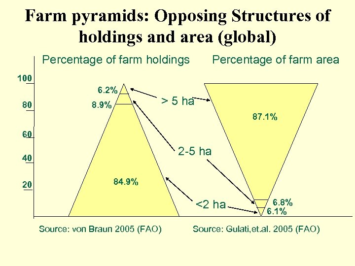 Farm pyramids: Opposing Structures of holdings and area (global) Percentage of farm holdings Percentage