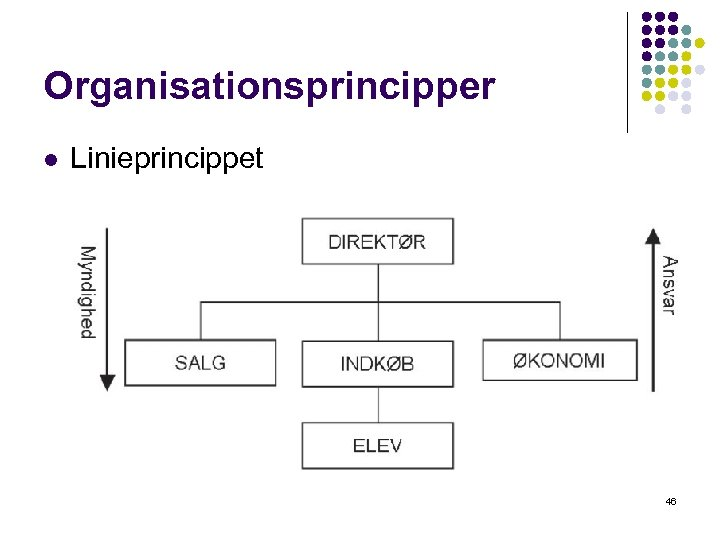 Organisationsprincipper l Linieprincippet 46