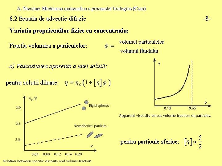 A. Neculae: Modelarea matematica a proceselor biologice (Curs) 6. 2 Ecuatia de advectie-difuzie -8