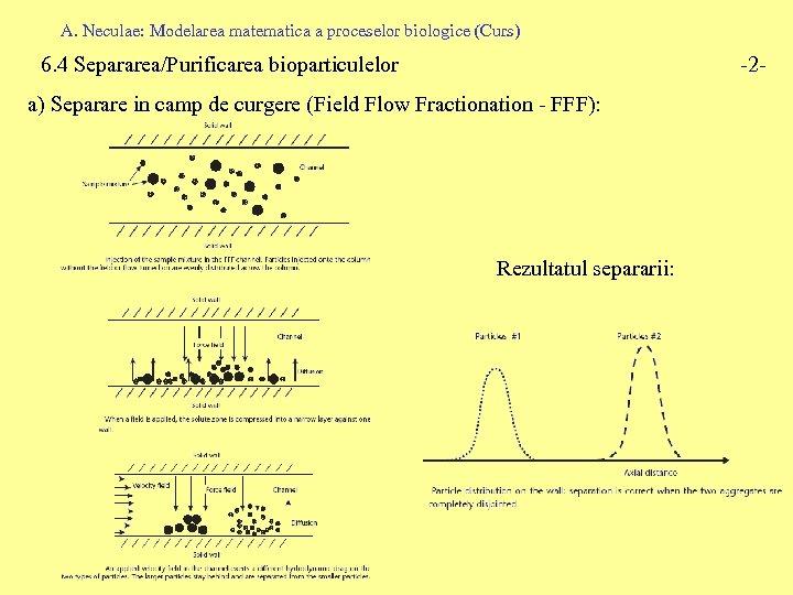 A. Neculae: Modelarea matematica a proceselor biologice (Curs) 6. 4 Separarea/Purificarea bioparticulelor -2 -
