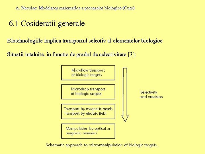 A. Neculae: Modelarea matematica a proceselor biologice (Curs) 6. 1 Cosideratii generale Biotehnologiile implica