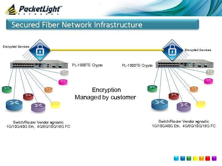 Secured Fiber Network Infrastructure Encrypted Services PL-1000 TE Crypto Encryption Managed by customer Switch/Router