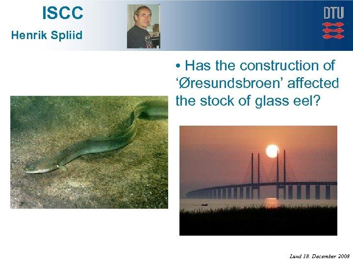 ISCC Henrik Spliid • Has the construction of 'Øresundsbroen' affected the stock of glass