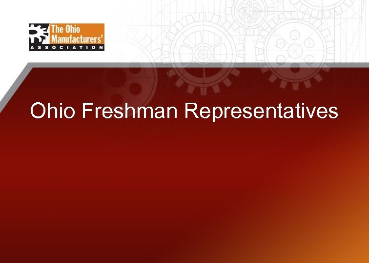 Ohio Freshman Representatives