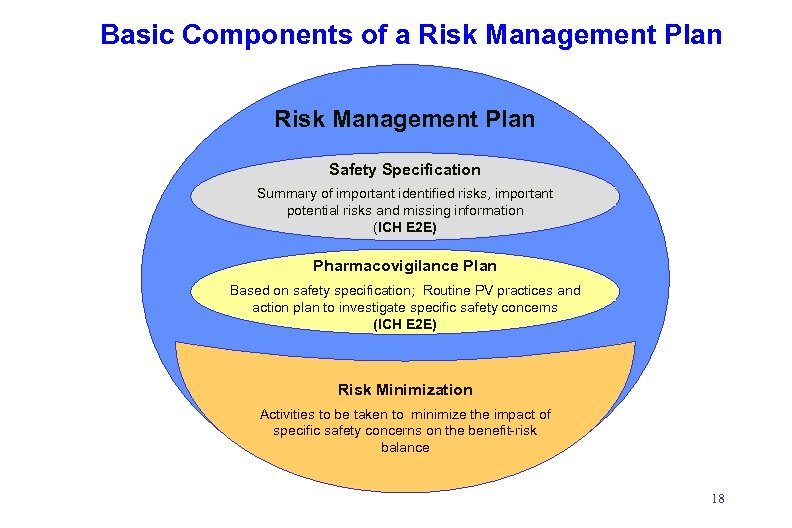 Basic Components of a Risk Management Plan Safety Specification Summary of important identified risks,