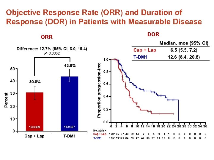 Objective Response Rate (ORR) and Duration of Response (DOR) in Patients with Measurable Disease