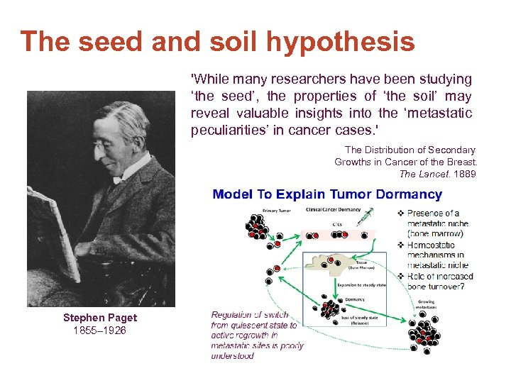 The seed and soil hypothesis 'While many researchers have been studying 'the seed', the