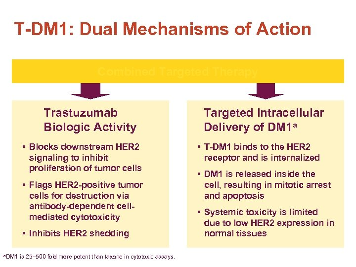 T-DM 1: Dual Mechanisms of Action Combined Targeted Therapy Trastuzumab Biologic Activity • Blocks