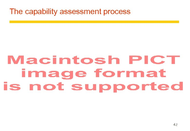 The capability assessment process 42