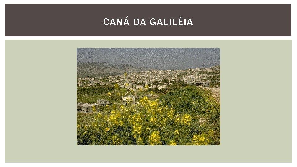 CANÁ DA GALILÉIA