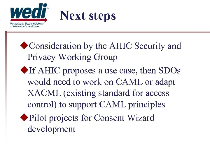 Next steps Consideration by the AHIC Security and Privacy Working Group If AHIC proposes