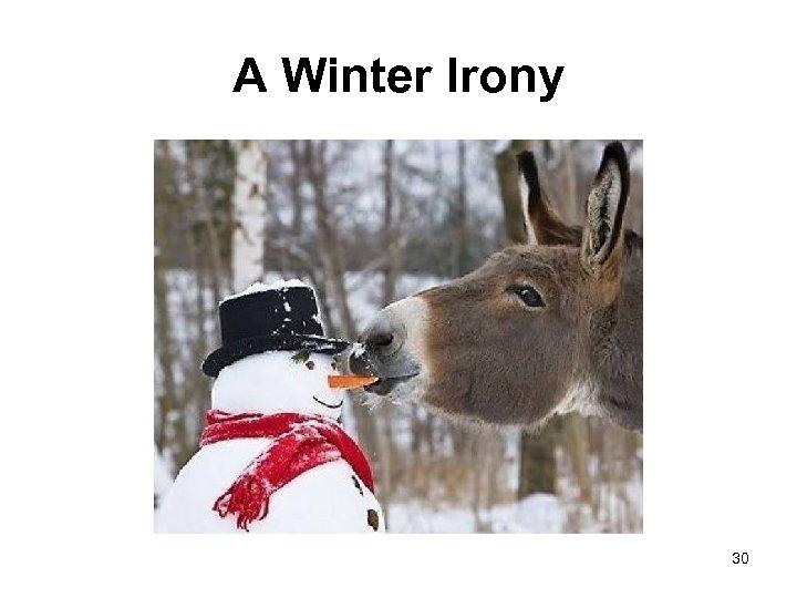 A Winter Irony 30