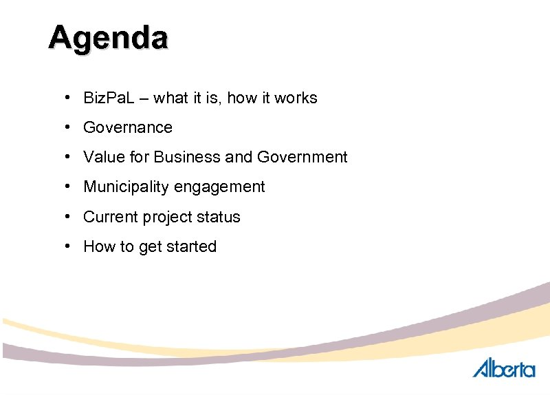Agenda • Biz. Pa. L – what it is, how it works • Governance
