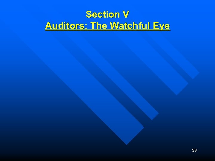 Section V Auditors: The Watchful Eye 39