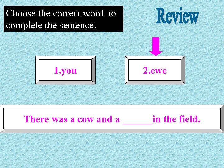 Choose the correct word to complete the sentence. 1. you 2. ewe There was