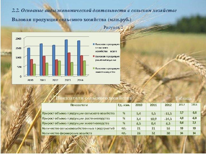 2. 2. Основные виды экономической деятельности в сельском хозяйстве Валовая продукция сельского хозяйства (млн.