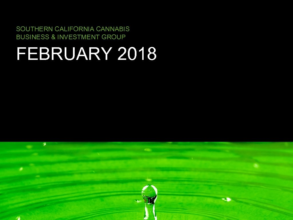 SOUTHERN CALIFORNIA CANNABIS BUSINESS & INVESTMENT GROUP FEBRUARY 2018